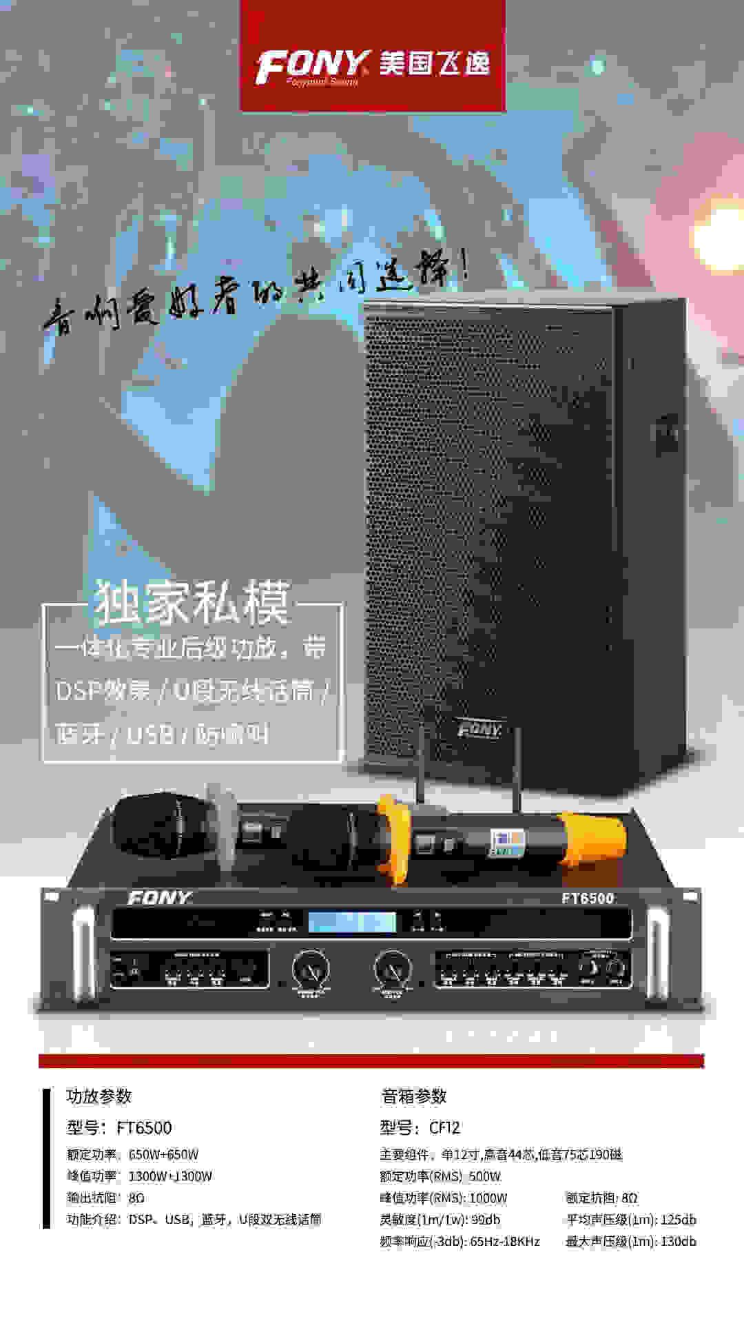 FT6500 CF12.jpg